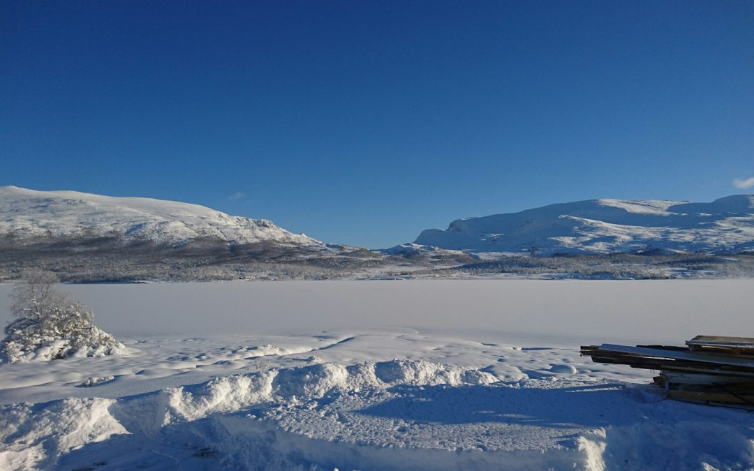 Sikkilsdalshø 1778moh turbeskrivelse