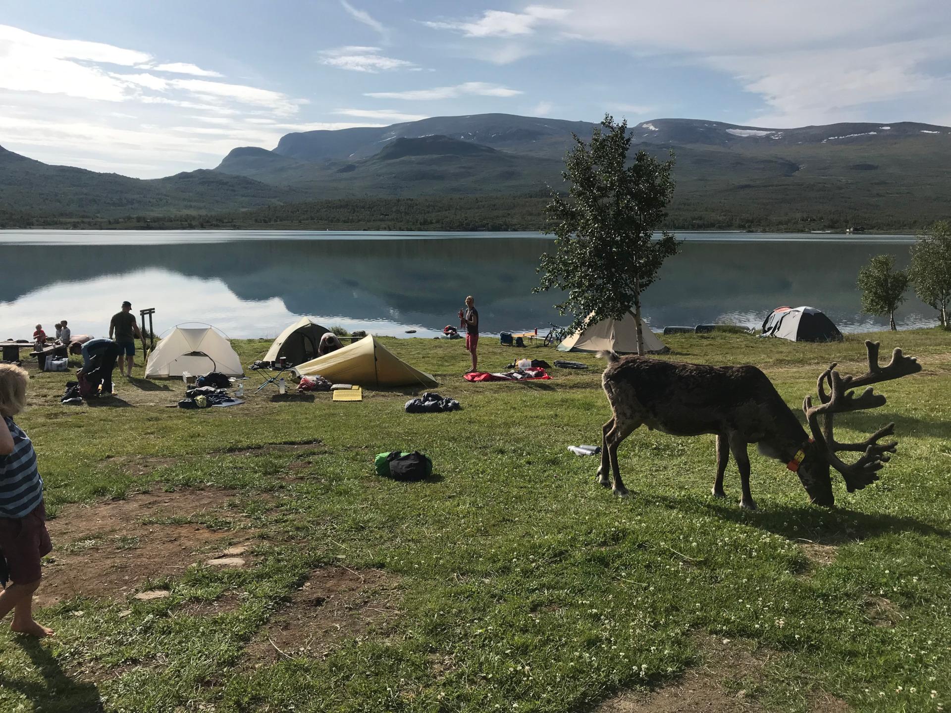 Camping Besseggen